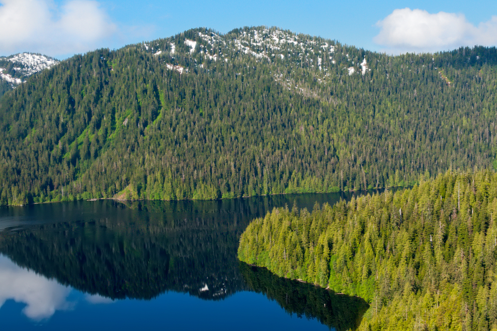 Ketchikan Alaska Mountain Landscape Tour - Shore Excursions Group