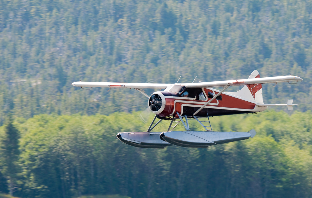 Misty Fjords Flightseeing Tour in Alaska - Shore Excursions Group