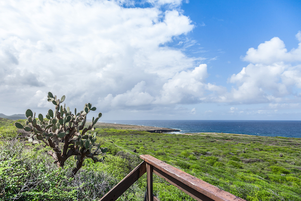 Christoffel National Park on Curacao, Caribbean - Shore Excursions Group
