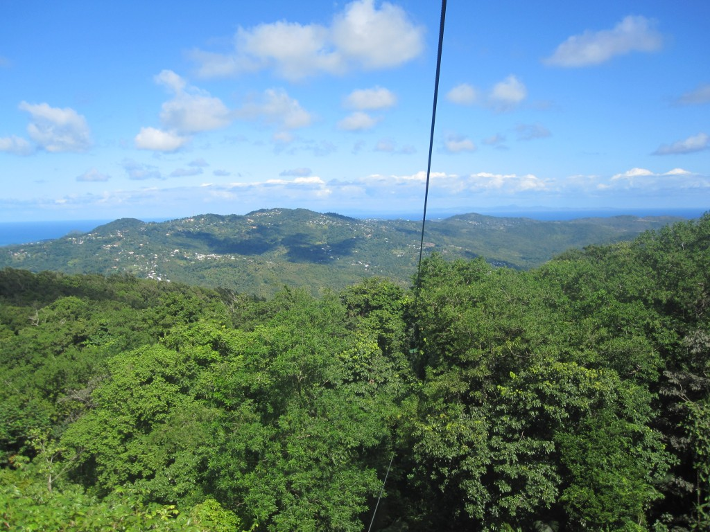 St Lucia Rainforest Canopy Day Tour - Shore Excursions Group