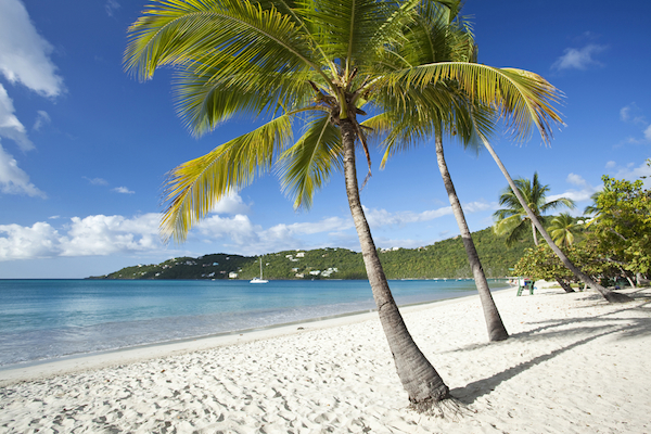 Magans Bay Day Trip in St. Thomas - Shore Excursions Group