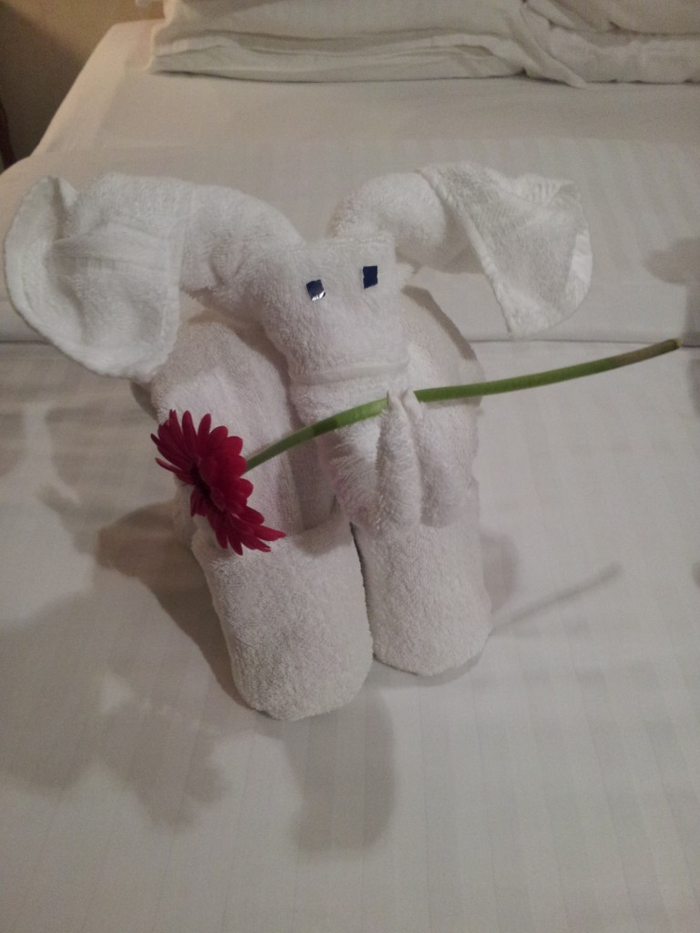 Hotel Towel Animal on Shore Excursion
