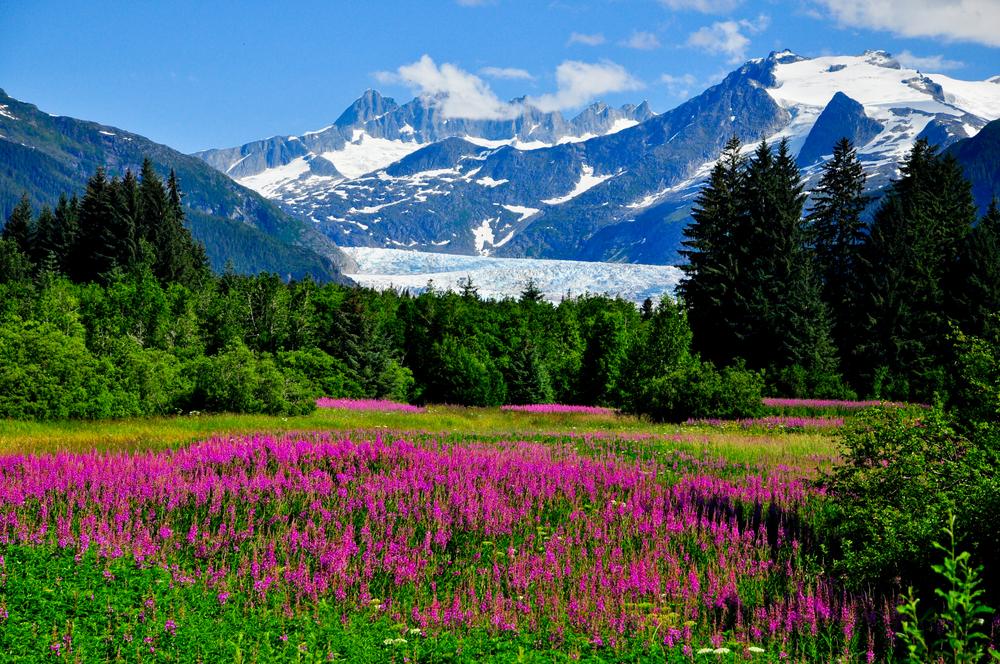 https://blog.shoreexcursionsgroup.com/wp-content/uploads/2015/04/Juneau-Alaska.jpg