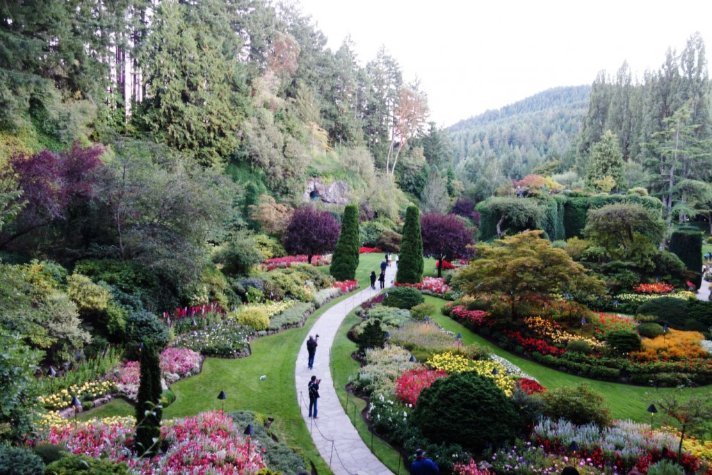 Lookout Point from Sunken Garden on Butchart Gardens Day Trip